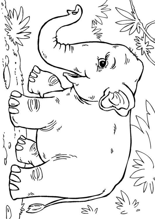 Malvorlage Asiatischer Elefant Ausmalbild 27868