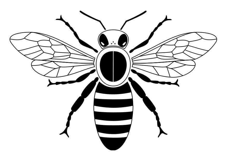 Erfreut Mandala Tiere Biene Fotos - Druckbare Malvorlagen - amaichi.info