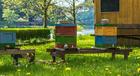 Malvorlage  Bienenstock