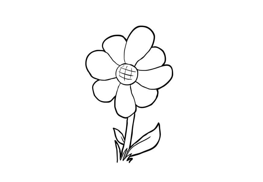 Malvorlage Blume   Ausmalbild 13948.