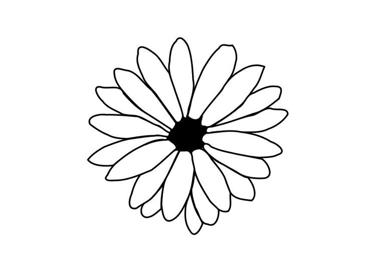 Malvorlage Blume   Ausmalbild 11712.