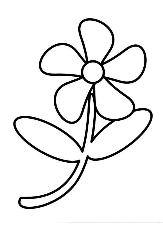Malvorlage Blume   Ausmalbild 11738.