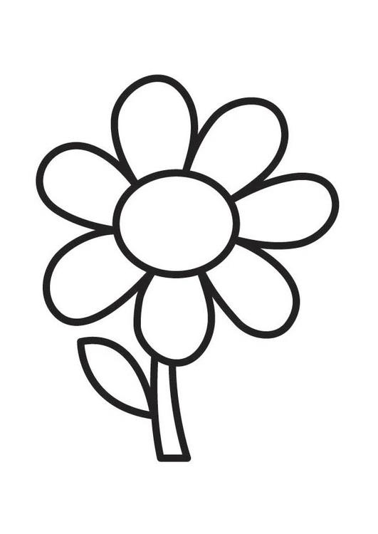 Malvorlage Blume | Ausmalbild 18352.