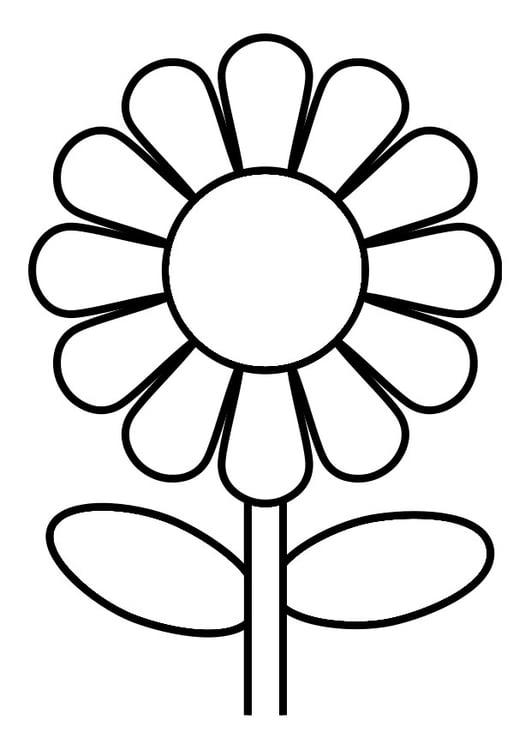 Malvorlage Blume | Ausmalbild 19246.