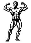 Malvorlagen Body building