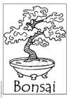 Malvorlage  Bonsaibaum