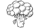 Malvorlage  Brokkoli