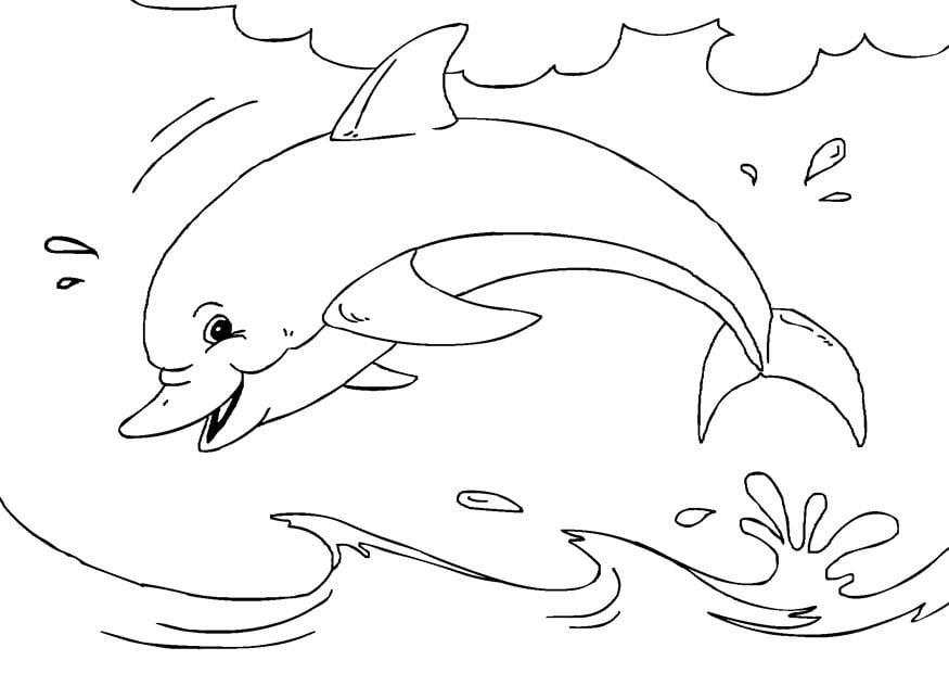 Malvorlage Delfin | Ausmalbild 27233.
