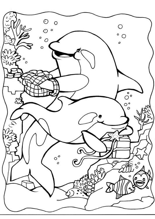 malvorlage delphine  kostenlose ausmalbilder zum