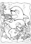 Malvorlage  Delphinen 2