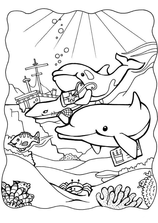 Fantastisch Druckbare Delphin Malvorlagen Ideen - Framing ...