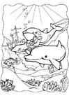 Malvorlage  Delphinen 3