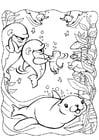 Malvorlage  Delphinen mit Seehund