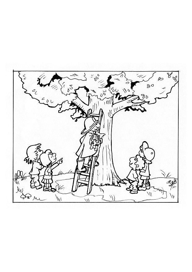Malvorlage Die Feuerwehr Holt Eine Katze Vom Baum Ausmalbild 9642