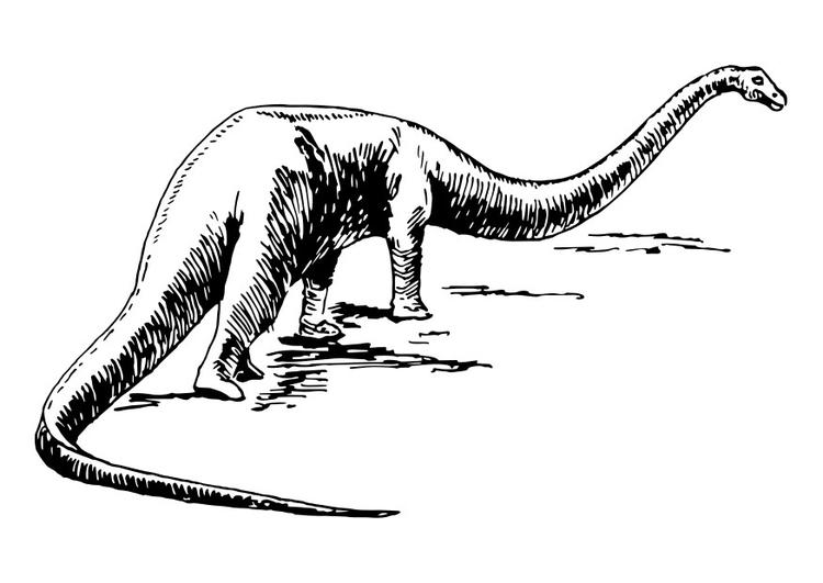 38 dinosaurier bilder zum ausdrucken  besten bilder von