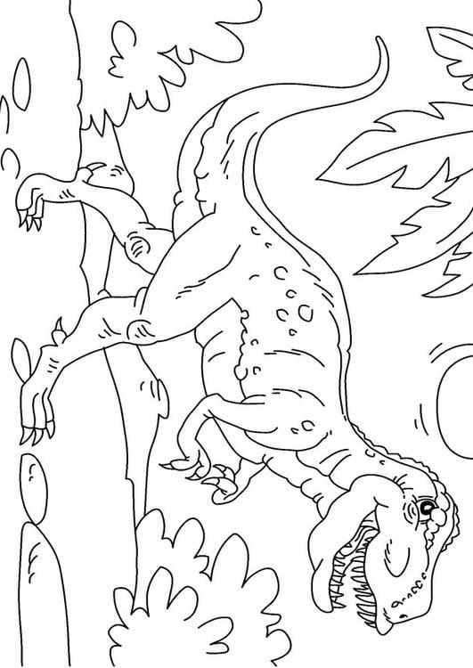 dino ausmalbilder t rex