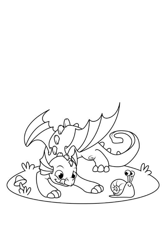 malvorlage drache spielt mit schnecke  kostenlose