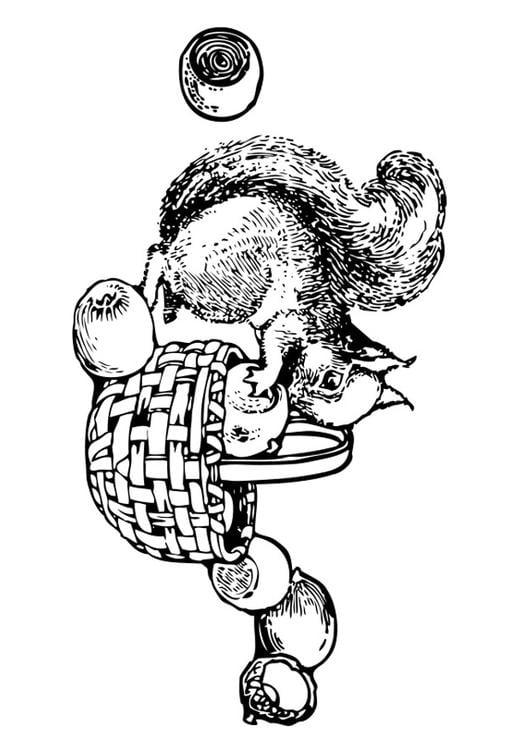 Malvorlage Eichhörnchen Ausmalbild 27107
