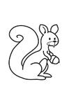 Malvorlage  Eichhörnchen