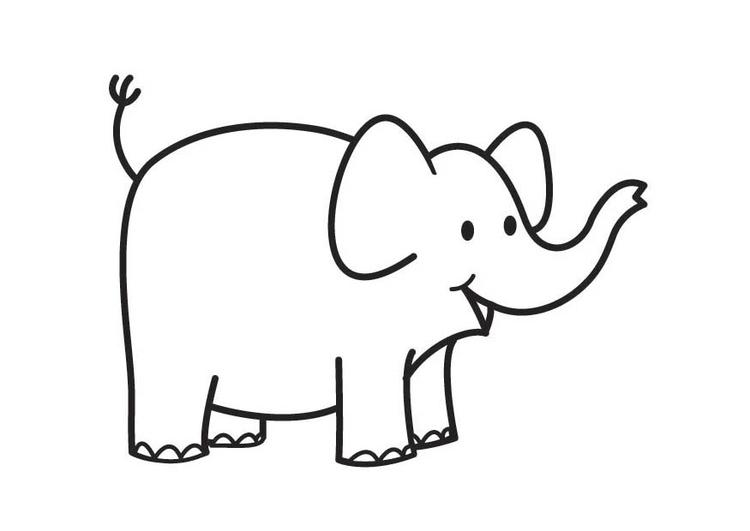 Malvorlage Elefant   Ausmalbild 17905.