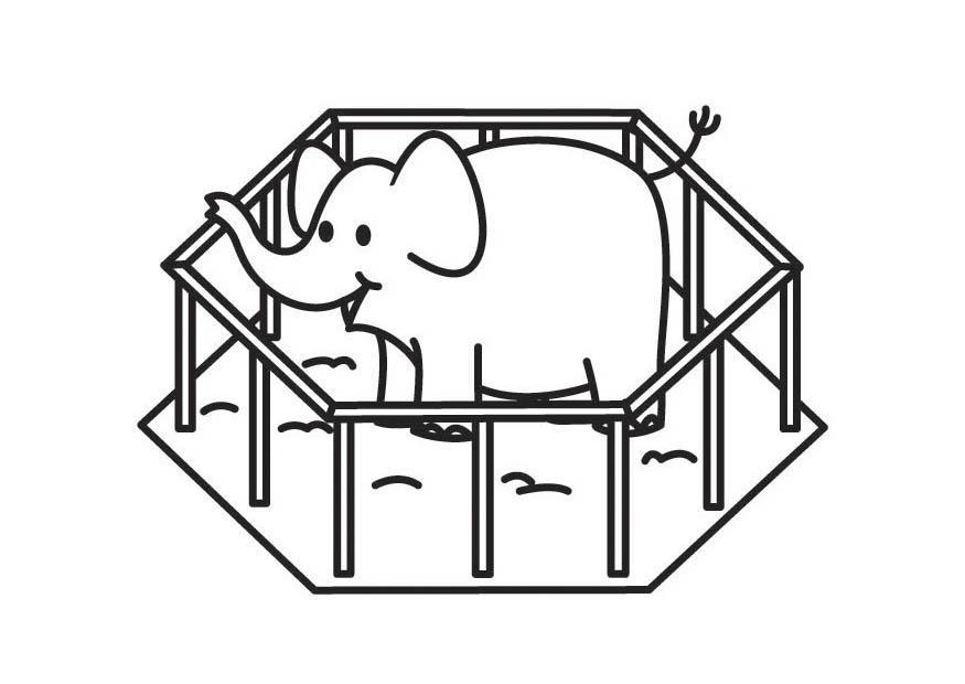 Malvorlage Elefant Im Kã Fig Ausmalbild 17584 Images