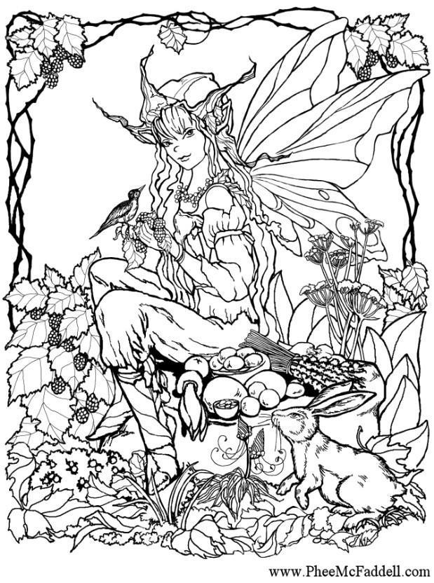 Malvorlage Elfe im Wald Ausmalbild