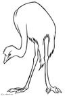 Malvorlage  Emu