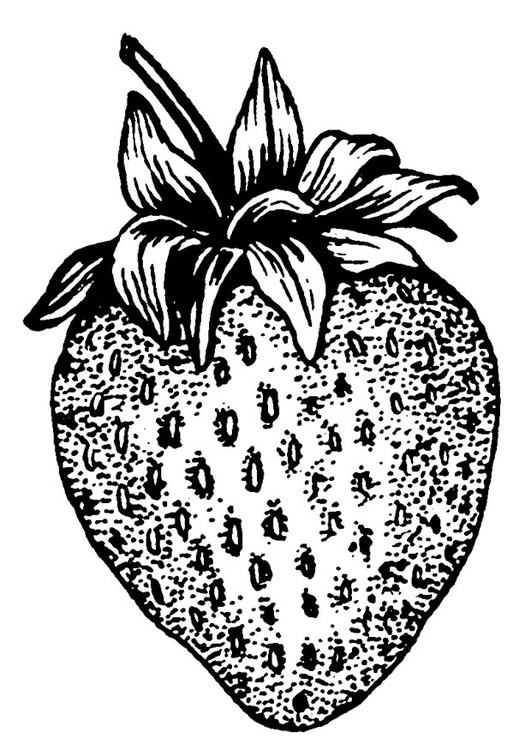 Malvorlage Erdbeere Ausmalbild 18766