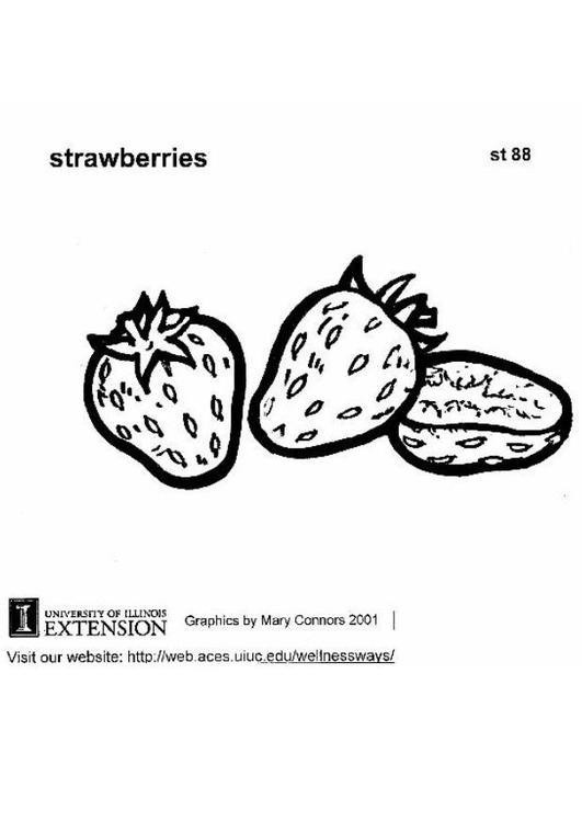 Malvorlage Erdbeeren Ausmalbild 5901