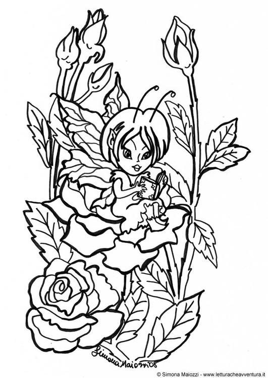 malvorlage fee zwischen rosen  kostenlose ausmalbilder