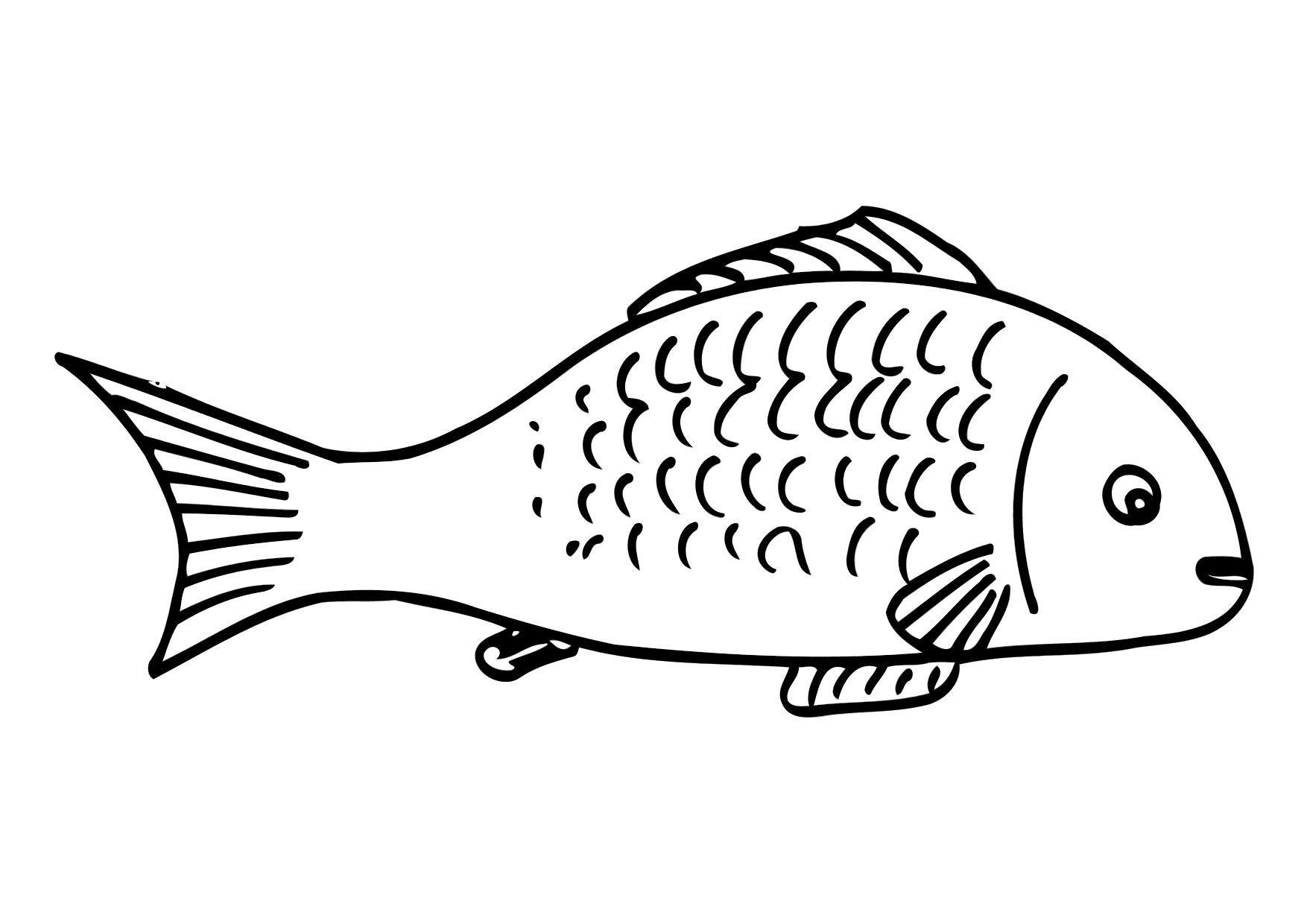 Malvorlage Fisch  Ausmalbild 12301