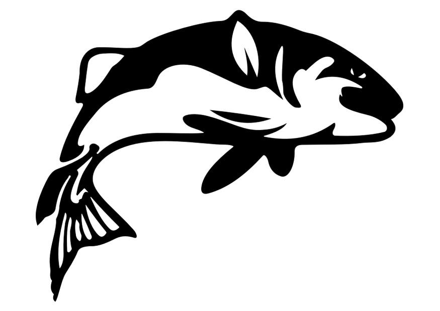 malvorlage fisch  kostenlose ausmalbilder zum ausdrucken