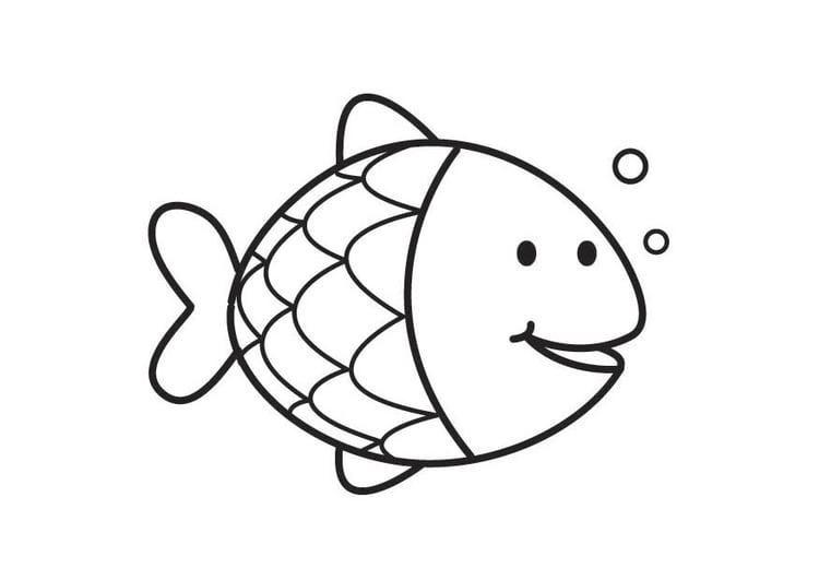 Malvorlage Fisch | Ausmalbild 17714.