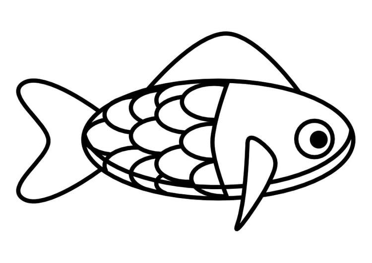 malvorlage fisch  ausmalbild 22442