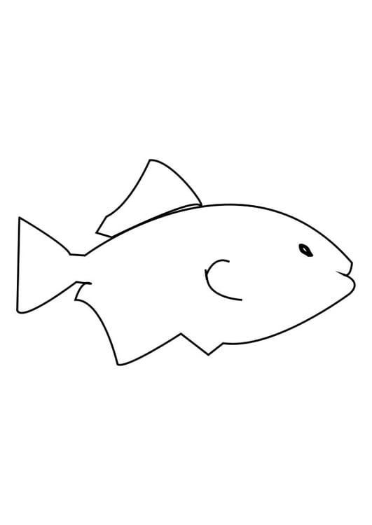 Malvorlage Fisch | Ausmalbild 27607.