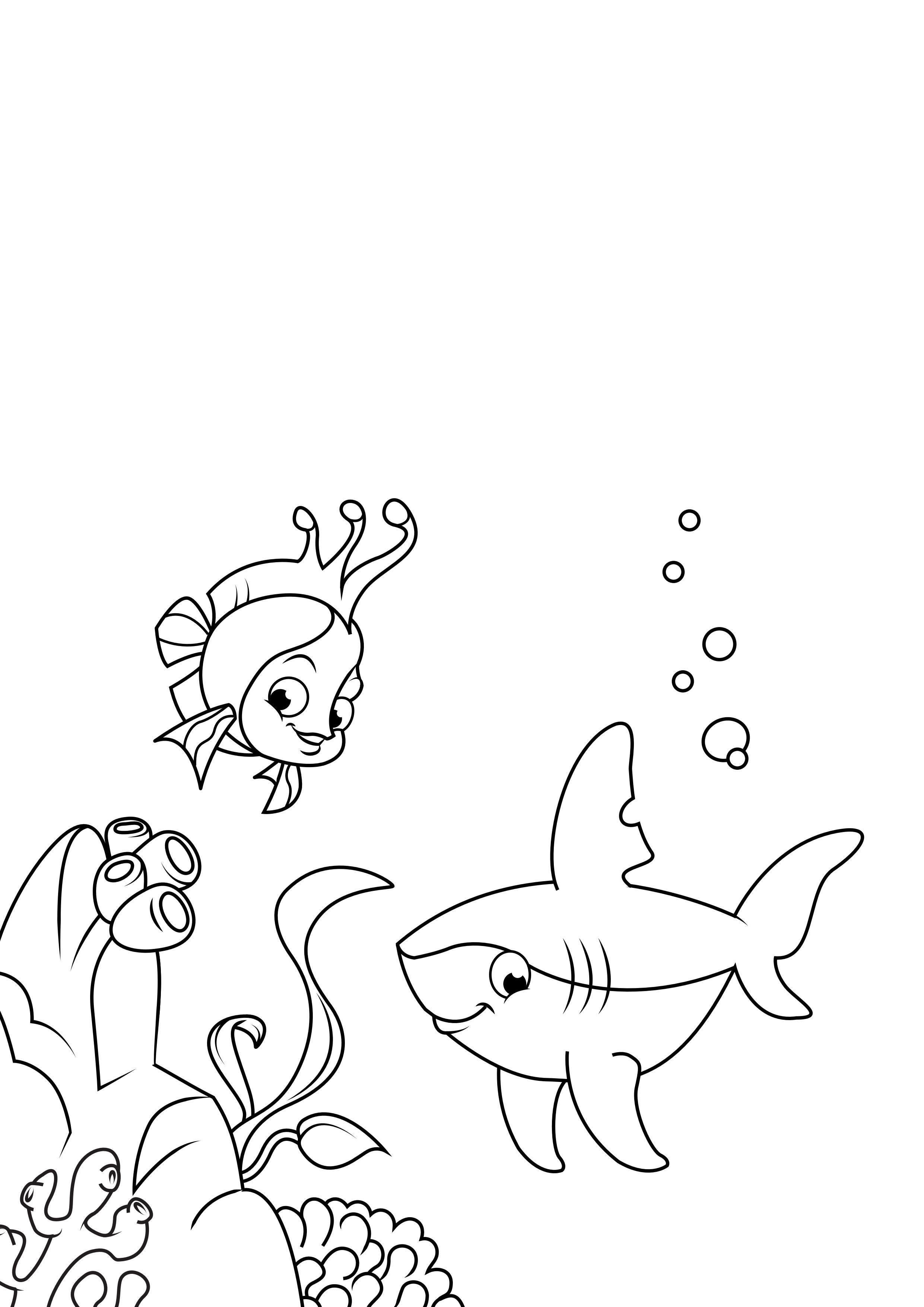 ausmalbild riesenkalmar  sea monsters google search sea