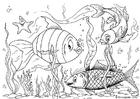 Malvorlage  Fische