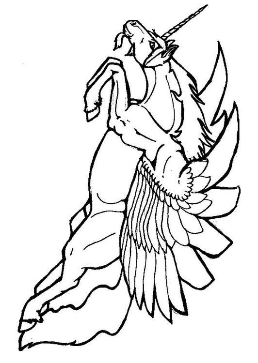 Malvorlage Fliegendes Einhorn Ausmalbild 6032