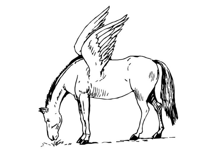Malvorlage Fliegendes Pferd Ausmalbild 9079