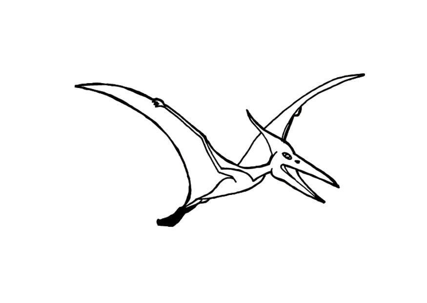 malvorlage flugsaurier  kostenlose ausmalbilder zum