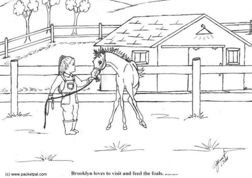 Kleurplaat Paard Voor Kleine Kinderen 3 Jaar Malvorlage Fohlen Ausmalbild 10275 Images