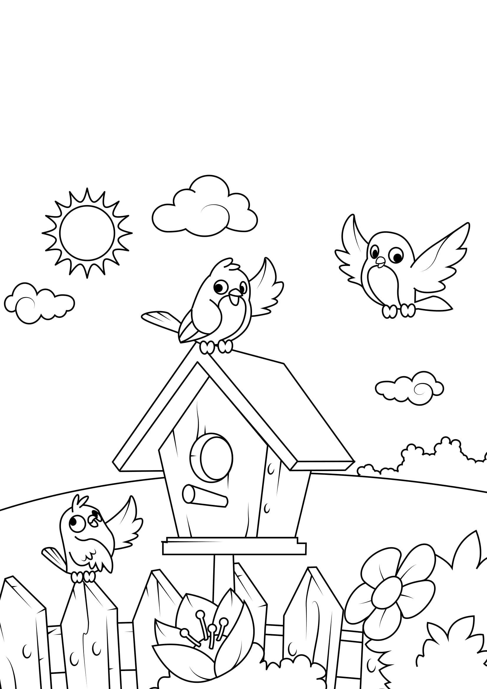 malvorlage frühling, vogelhaus - kostenlose ausmalbilder