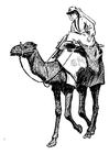 Malvorlage  Frau auf Kamel