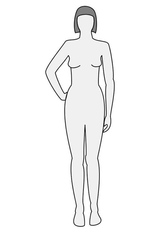 Ziemlich Körper Malvorlagen Galerie - Entry Level Resume Vorlagen ...