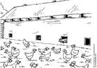 Malvorlage  Freilandhaltung