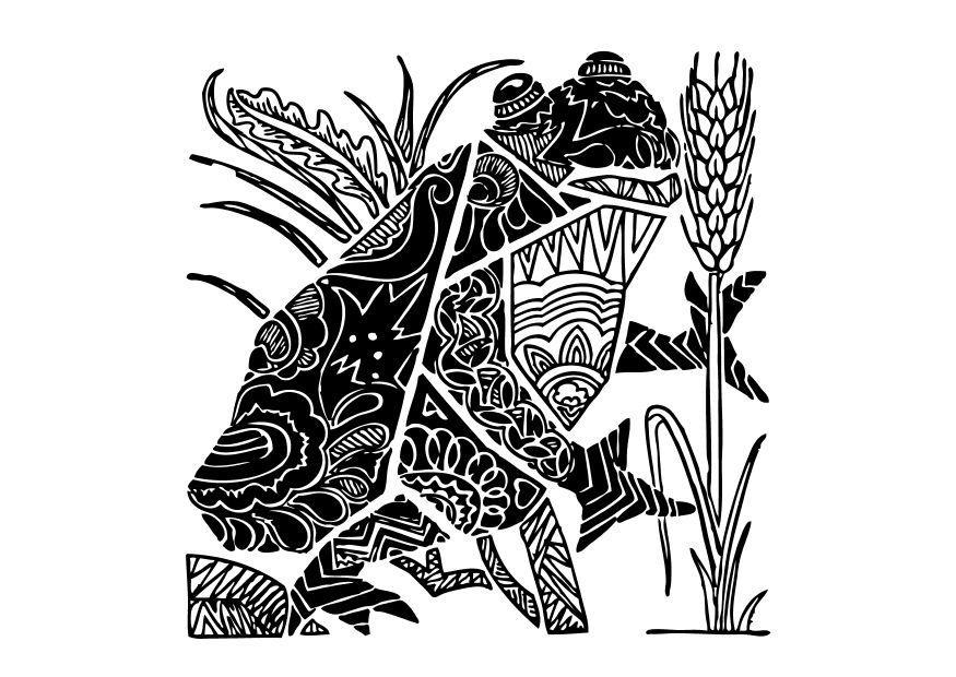 malvorlage frosch  kostenlose ausmalbilder zum ausdrucken