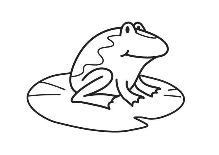 Malvorlage Frosch Ausmalbild 17874 Images