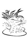 Malvorlage  Frosch