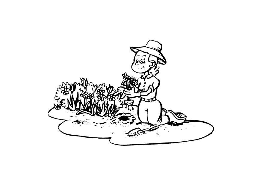 malvorlage gärtnern  kostenlose ausmalbilder zum ausdrucken