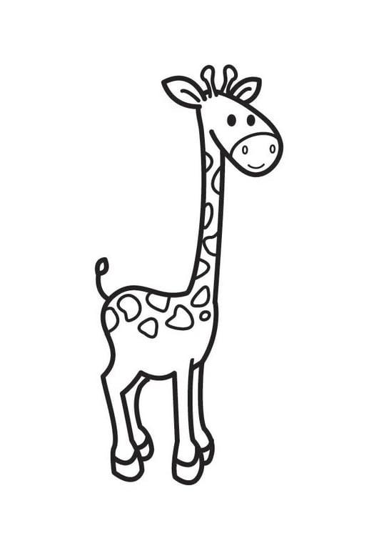 Malvorlage Giraffe   Ausmalbild 17684.